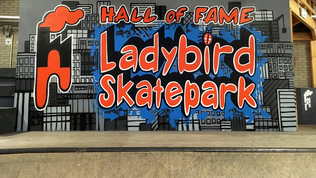 graffiti-muurschildering-ladybird-skatepark