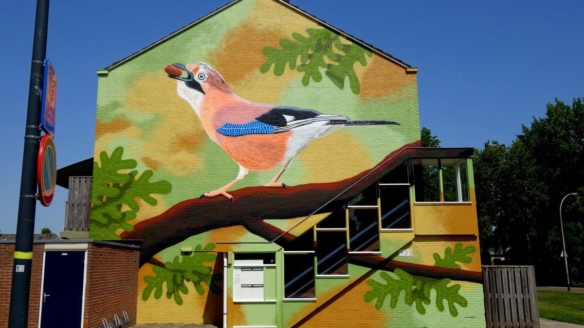 muurschilderingwaalwijkvlaamsegaai